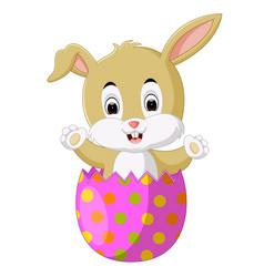 a rabbit inside a cracked easter egg vector image