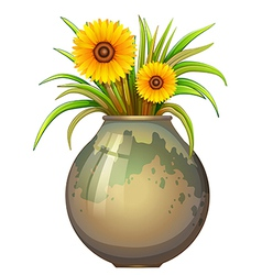 A pot with yellow flowers vector