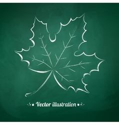 Autumn leaf vector