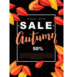 autumn sale design poster vector image