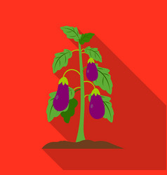 eggplant icon flat single plant icon from the big vector image vector image