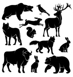 Forest animals for wood design zoology vector