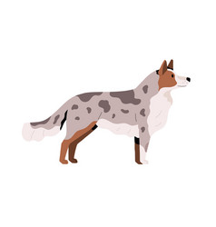 Side view cute young dog beautiful doggy vector