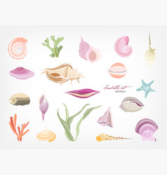 collection of gorgeous hand drawn seashells vector image