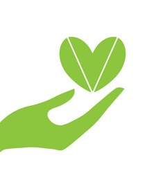 hand and heart eco vector image vector image
