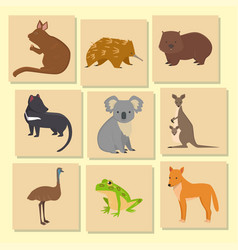 Australia wild animals card cartoon popular nature vector