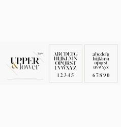 Elegant alphabet letters font set classic custom vector