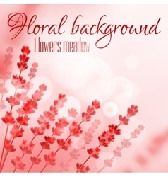 Floral pink background with flower meadow vector