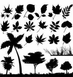 flower leaf and trees vector image