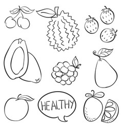 fruit hand draw doodle style vector image