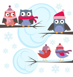 Owls and birds in winter forest vector image
