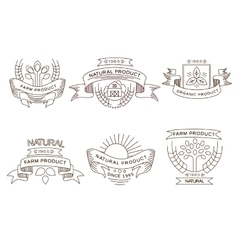 Retro farm fresh labels badges and design vector image