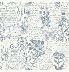 seamless pattern with hand-drawn herbs and insects vector image