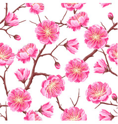 Seamless pattern with sakura or cherry blossom vector