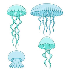 set of color with jellyfish vector image