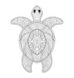 turtle in zentangle style freehand sketch vector image