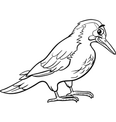 yaffle bird animal coloring page vector image vector image