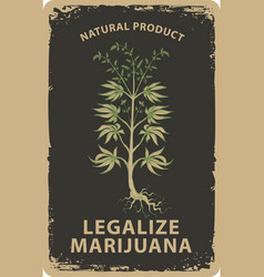 Banner for legalize marijuana with cannabis plant vector