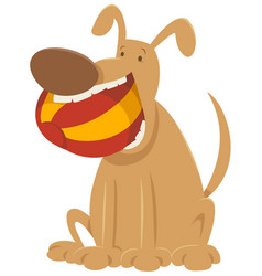 Dog with ball cartoon character vector