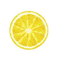 Half of a lemon citrus slice vector