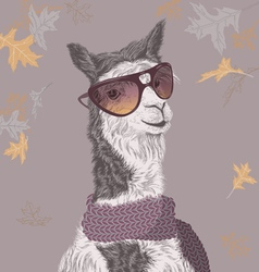 Lama on the autumn background vector