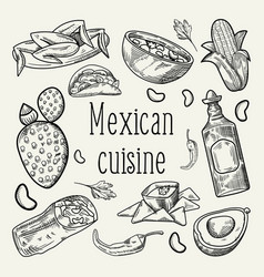 Mexican food hand drawn outlined doodle vector