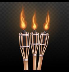 Realistic burning tiki torch set isolated on dark vector