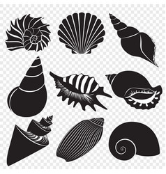 Sea shells black silhouettes isolated on vector