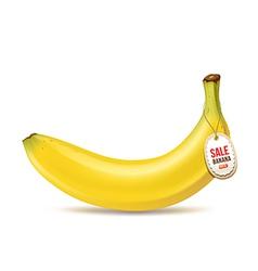 Banana and tag vector