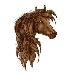 Brown arabian horse head isolated sketch vector