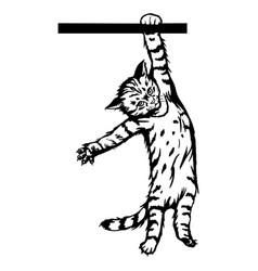cat peeking kitten - cheerful kitty isolated vector image