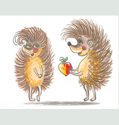 Couple of hedgehogs vector