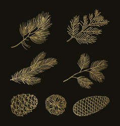 gold fir branches and cones doodle set vector image