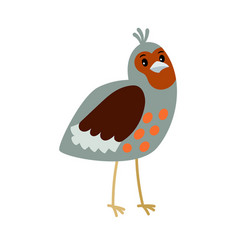 partridge cartoon bird icon vector image