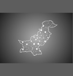 Wireframe mesh polygonal pakistan map abstract vector