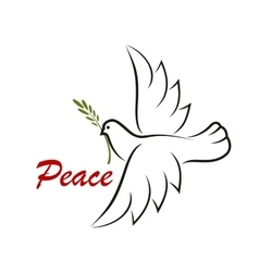 White dove with green twig vector image