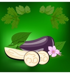 Eggplant Healthy lifestile vector image vector image