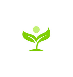green ecology leaf logo vector image