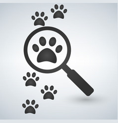 magnifying glass over footprints vector image
