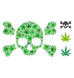 Skull crossbones mosaic of marijuana vector