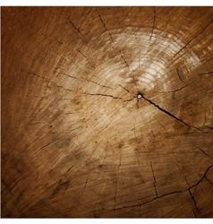 Wood texture Tree rings sawing wood vector