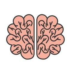 Brain storming isolated icon vector