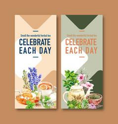 Herbal tea flyer design with sage basil vector