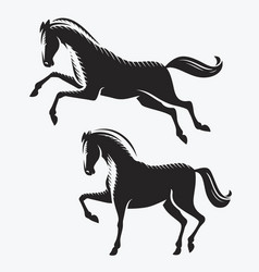 horse symbol animal racehorse vector image