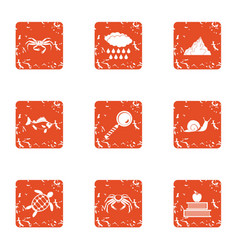 Monitoring icons set grunge style vector