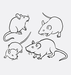 Mouce mice mammal animal sketches vector