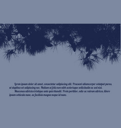 pine branch tree vector image