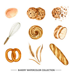 Set various isolated watercolor hand drawn vector