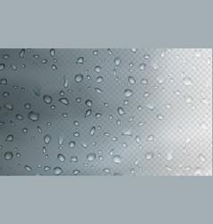 stock rain realistic water vector image