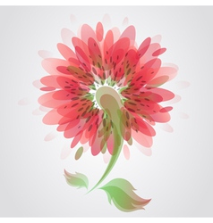 Beautiful red flower vector image vector image